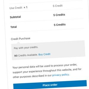 Use Credit Checkout